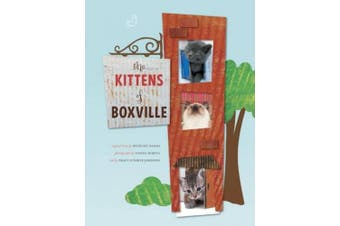 The Kittens of Boxville