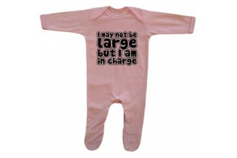 (6 - 12 Months, Pink) - Bang Tidy Clothing Baby Girl's I May Not Be Large But I'm In Charge Rompersuit