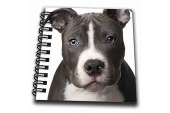 (4x4 notepad) - Dogs Pitbull - American Pit Bull Terrier Puppy - Mini Notepad 10cm x 10cm (db_4240_3)