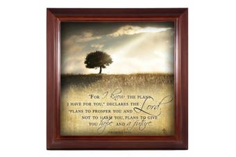 For I know the Plans I Have For You Jeremiah 29:11 14 x 14 Woodgrain Framed Wall Art Plaque