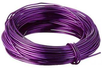 Beadaholique Minor Details 42625 18 Gauge Aluminium Craft Wire, 12m, Purple