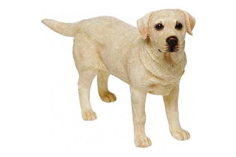 Leonardo Golden Labrador Retriever Dog Figurine Statue Attractive Ornament