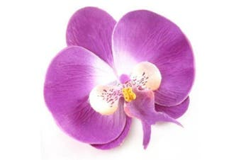 (Purple) - Boolavard TM Orchid Flower Hair Clip Bridal Hawaii Party Girl (Purple)
