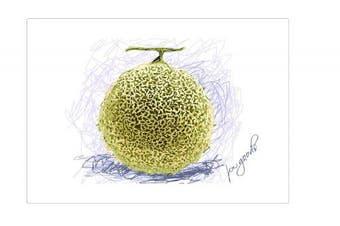 (2, Melon) - 100 Goods Silicone Yubari Melon Placemat , 11.4 x 41cm x 0.08cm , Set of 2 Transparent White