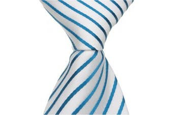Matching Tie Guy 2443 B13 - 24cm . Zipper Necktie - White With Blue Stripes 6 to 18 Month