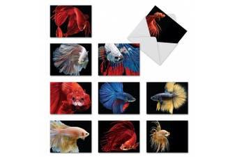 (10 Assorted Blank Note Cards (SKU:M1630BN)) - M1630BN Fancy Fins: 10 Assorted Blank Thank You Note Cards w/White Envelopes.