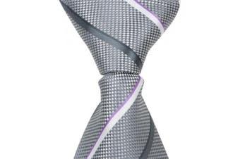 Matching Tie Guy 4585 X6 - 28cm . Zipper Necktie - Grey With Grey & White Stripes 24 Month to 4T