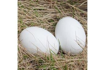 6Pcs Wooden Faux Fake Eggs, Children Play Kitchen Game Food Toy - White Colour