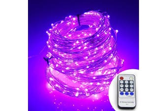 (50m, Purple) - ER CHEN(TM) 165ft Led String Lights,500 Led Starry Lights on 50M Silver Coating Copper Wire String Lights + 12V DC Power Adapter + Remote Control(Purple)
