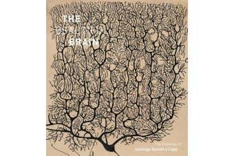 Beautiful Brain: The Drawings of Ramon y Cajal: The Drawings of Ramon y Cajal