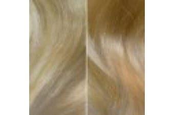 (New York 9G.10 Ombré) - Balmain Catwalk Ponytail Memory Hair 55 cm New York