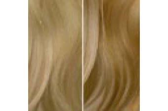 (Amsterdam 9.10A Ombré) - Balmain Catwalk Ponytail Memory Hair L.A. 55 cm