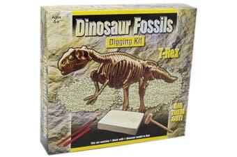 (T Rex) - Dig Out Dinosaur Skeleton Fossil Palaeontology Archaeology Excavation Kit For Kids ~ T Rex