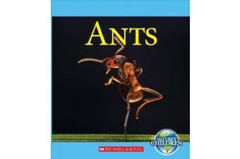 Ants (Nature's Children)