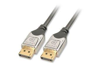 (3m) - 3m DisplayPort Cable