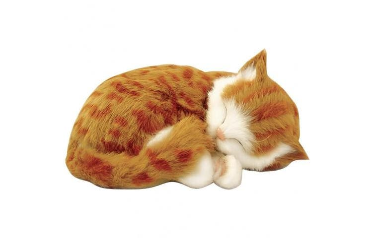 "Perfect Petzzz Orange Tabby Cat Realistic ""Breathing"" Sleeping Kitty Pet Set"