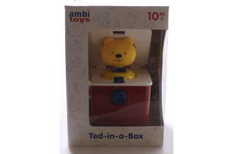 Galt Toys Ambi Ted in a Box