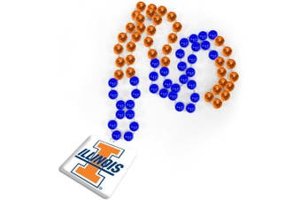 (Illinois Fighting Illini) - Rico Industries Illinois Fighting Illini Team Logo Beads