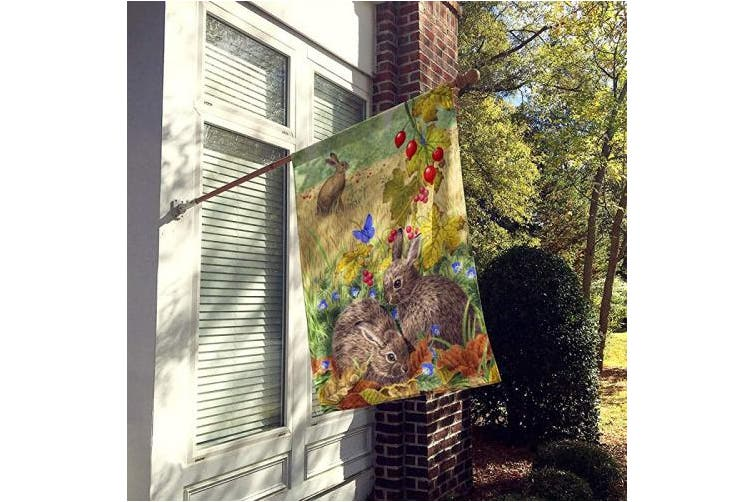(Large) - Caroline's Treasures ASA2140CHF Leverets and Rabbit Flag Canvas House Size, Large, Multicolor