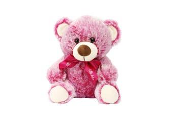 Bear 22cm - Hot Pink With Ribbon