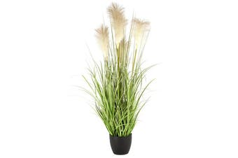 Holly Collection | Potted  Pampas Grass Plant | 90cm