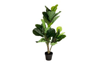 Holly Collection   Potted FiddleLeaf Fig Tree   120cm