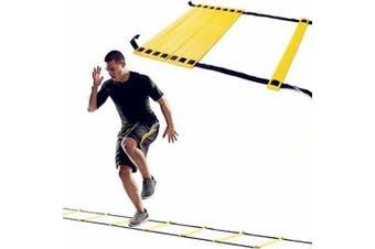 Morgan Adjustable 4M Speed & Agility Ladder - Flat