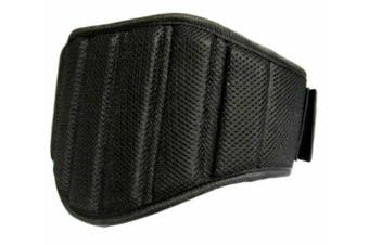 Morgan V2 Endurance Weight Belt [Large]