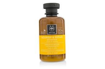 Apivita Nourish & Repair Shampoo with Olive & Honey (For Dry-Damaged Hair) 250ml/8.45oz