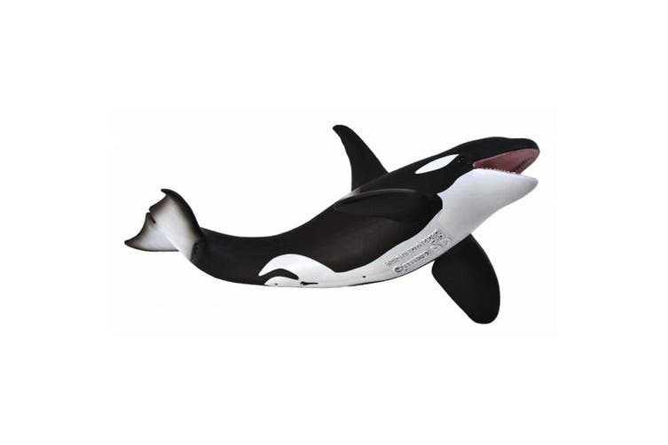 CollectA Ocean and Ice Orca Toy Figure