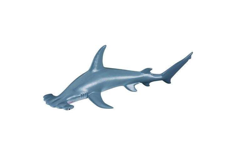 CollectA Ocean and Ice Scalloped Hammerhead Shark M