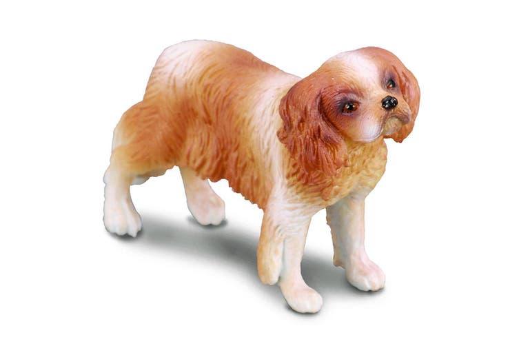 CollectA Farm Time Cavalier King Charles Spaniel Dog M