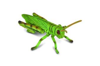 CollectA Little Wonders Grasshopper M
