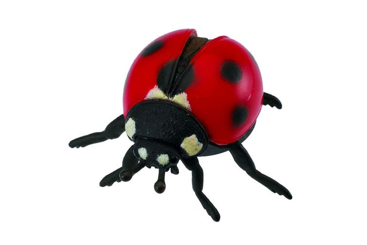 CollectA Little Wonders Ladybird M