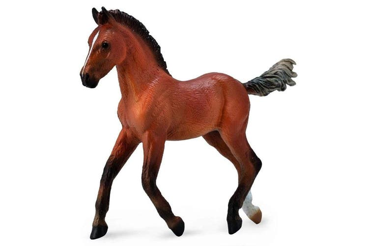 CollectA Horse Country Hanoverian Foal Bay M