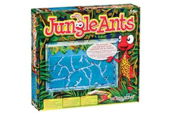 Jungle Ants Gel Ant Farm and Ant Habitat