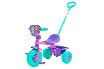 Paw Patrol Skye Trike with Parental Handle