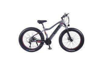 "AKEZ Cruiser Snow Bicycle Electric Bike eBike 26"" w/ Removable Battery Gray"