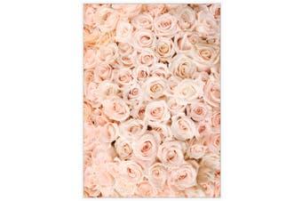 Cooper & Co Framed Wall Art Pink Rose 100X140 cm