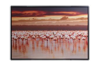 Cooper & Co.  82 x 122cm Flamingo Print Canvas Framed Wall Art