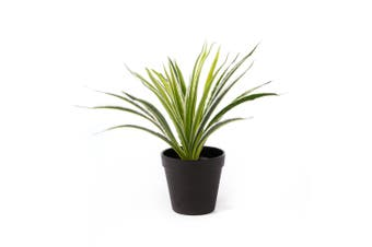 Cooper & Co. Artificial 30Cm  Spider Potted Plant
