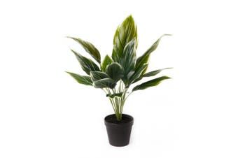 Cooper & Co. Artificial 47Cm  Hearty Plant