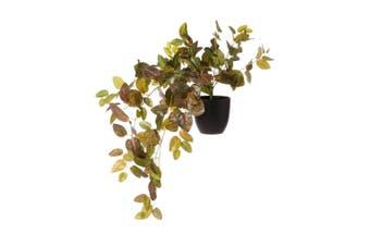 Cooper & Co. Artificial 78Cm  Perilla Leaf Hanging Plant