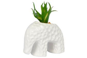Artificial Mini Succulent in Elephant Pot