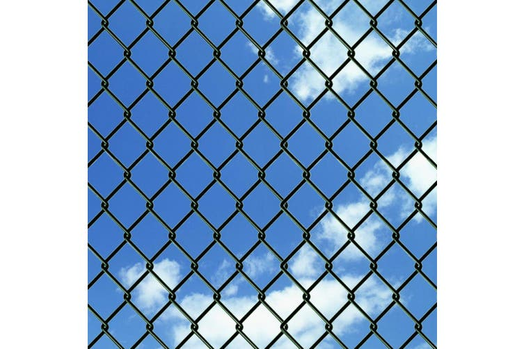 140343  Chain Link Fence Steel 0,8x15 m Green