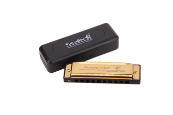Professional Harmonica 10 Blues