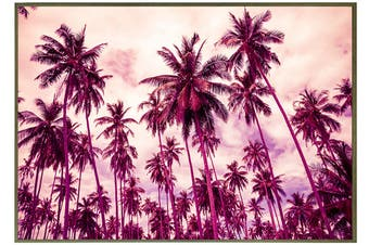 Jenson Palm Canvas Print