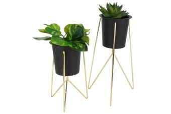 Sela S/2 Metal Pot Plant Stand In Col Box Gold   12cm X 12cm X 19cm  