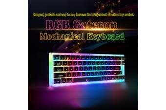66keys Gateron Switch Mechanical Gaming Keyboard USB 3.1 Wired RGB LED Light-Black/Brown/Blue/Red Switch(white,Brown Switch)