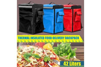 42L Thermal Insulated Bag Portable Food Pizza Delivery Picnic Storage Backpack